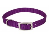 Coastal Single-Ply Nylon Collar Purple 3/8X12in