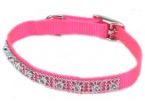 Coastal Nylon Jeweled Collar Neon Pink 3/8X10in