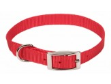 Coastal Single-Ply Nylon Collar Red 5/8X16in
