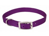 Coastal Single-Ply Nylon Collar Purple 5/8X16in