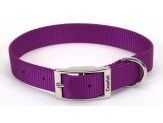 Coastal Single-Ply Nylon Collar Purple 3/4X18in