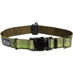 "Coastal K9 Explorer 1"" Adj Collar   Fern Green  (18-26"")"