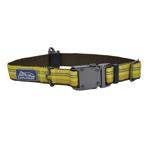 "Coastal K9 Explorer 1"" ADJ COLLAR     Goldenrod Yellow   (12-18"")"
