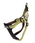 "Coastal K9 Explorer 1"" Padded Harness  Fern Green  (20-30"")"