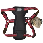 "Coastal K9 Explorer 1"" Padded Harness  Berry Red   (26-38"")"