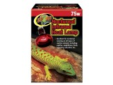 Zoo Med Nocturnal Infrared Heat Lamp 75W