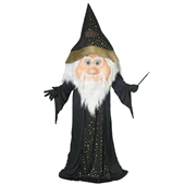 Parade Wizard  Adult Costume | 113955