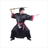Samurai Adult Costume
