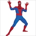 The Amazing Spider-Man Super Deluxe Teen Costume