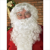 Economy Santa Beard & Wig Set Adult