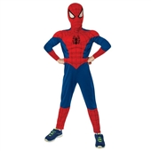 Ultimate Spider-Man Muscle Chest Kids Costume | 219368
