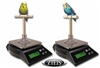 ZIEIS Small Avian Bird Scale with Suction Cup-Free Shipping