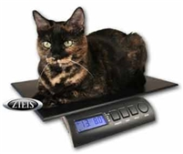 ZIEIS Veterinary Pet Scale 15 lb Capacity-Free Shipping