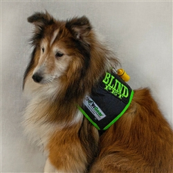 Blind Dog Vest, Medium SHONVest