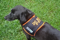Do Not Pet Dog Safety Vest, Large SHONVest