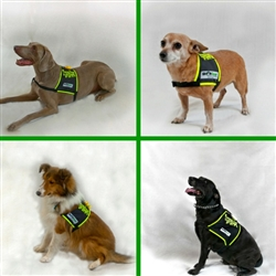 Traveling Dog Safety Vest,  SHONVest
