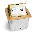 Lew Electric PUFP-CT-B-2USB Countertop Box, Pop Up w/15A & Single Power/2 USB Receptacle - Brass