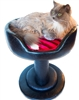 Onyx Flame Cat Bed