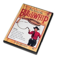 The Art of the Bullwhip