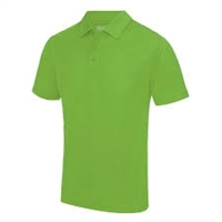 2. POLO SHIRT(adult)