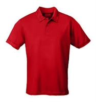 2. POLO SHIRT (youth)