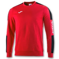 3. Training Sweatshirt