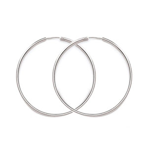 H1S2 - Endless Hoop 2mm Tube