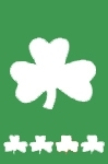 Shamrocks Full Size House Flag