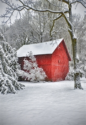 Red Barn in Snow House Flag