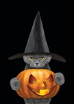 Grouchy Halloween Cat Decorative Garden Flag