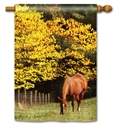 Out to Pasture BreezeArt Decorative Standard House Flag