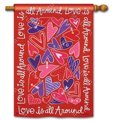 Mix It Up Valentine BreezeArt Standard House Flag