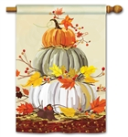 Neutral Pumpkins BreezeArt Standard House Flag