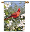 Cardinal in Blossoms BreezeArt Standard House Flag