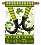 Irish Jig Decorative Standard House Flag