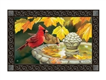 Pretty Reflection MatMates Decorative Doormat