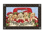 Bringing Home the Puppies MatMates Decorative Doormat
