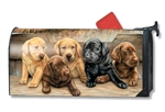 Bundles of Cuteness Large MailWraps Mailbox Cover