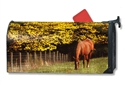 Out to Pasture Large MailWraps Magnetic Mailbox Cover