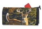 Whitetail Buck Large MailWraps Magnetic Mailbox Cover