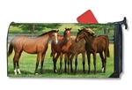 Grazing Time Large Mail Wraps Mailbox Cover