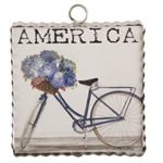 RTC Gallery Mini Americana Bike