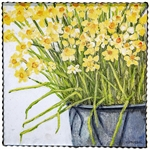 Gallery Bucket of Daffodils