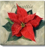 Darren Gygi Poinsettia Canvas Art