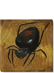 "Darren Gygi ""Black Widow Halloween Spider"" Canvas Print (5"" x 5"")"