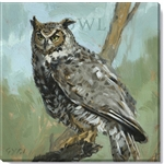 "Darren Gygi Great Horned Owl (5"" X 5"")"