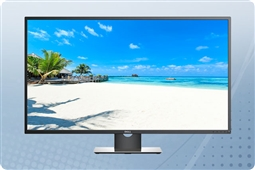 "Dell P4317Q 43"" 4K LED LCD Monitor from Aventis Systems"