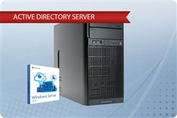HP ProLiant ML110 G6 Plug and Play Active Directory Server from Aventis Systems