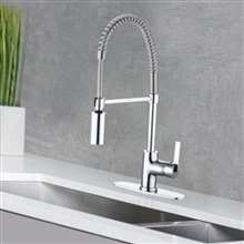 Naples Single Handle Kitchen Faucet with Pull Down Sprayer