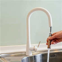 Rome Single Handle Kitchen Sink Faucet with Pull Down Sprayer